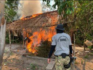 A Polícia Federal deflagrou, no período compreendido entre os dias 27 de julho e 07 de agosto de 2020, uma nova etapa da Operação Muçambê III, objetivando a erradicação de cultivos ilícitos de maconha (Cannabis Sativa).