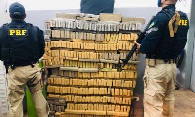 PRF apreende meia tonelada de maconha na BR 010, avaliada em R$ 500 mil
