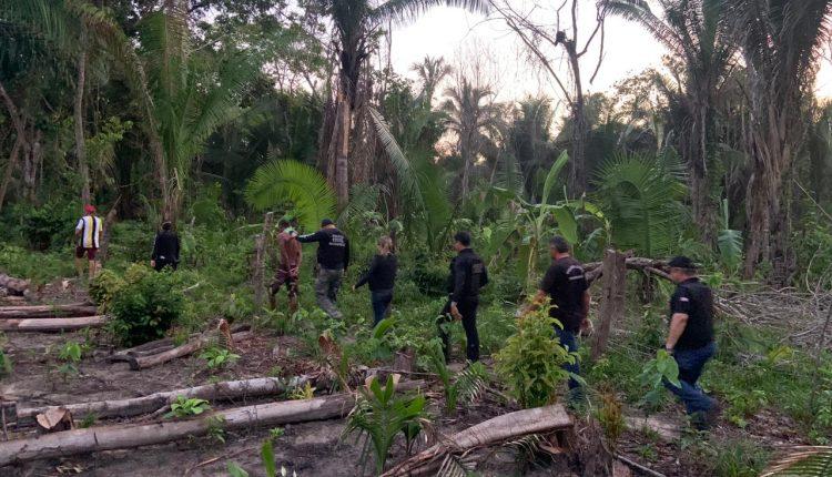 Um homem foi preso na última quarta-feira (18), na zona rural do município de Cajari (interior do Maranhão), por suspeita de ter cometido o crime de feminicídio contra a companheira.